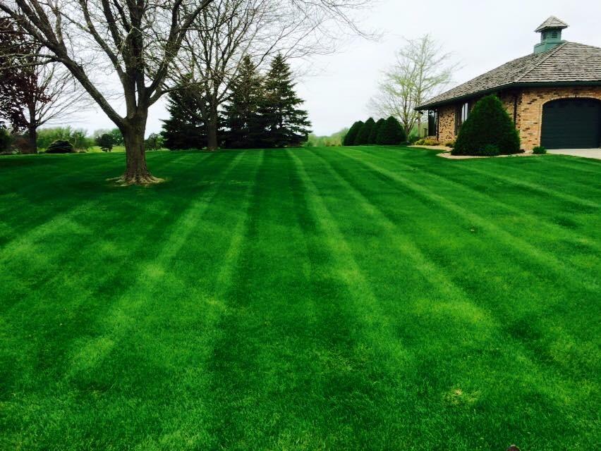 Basics Of Lawn Aeration Gregs Gr