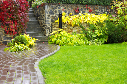 Should You Hire a Professional for Lawn Fertilization Services?